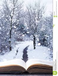 winter woodland book stock photo image of 36123304