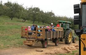 field trips daleville va ikenberry orchards