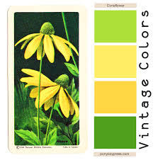 Color Green Vintage Coneflower Color Palette Green Gold Yellow U0026 Yellow