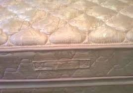 Upholstery Shampoo For Mattress How To Wash A Mattress