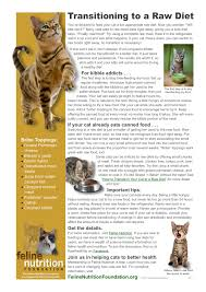 feline nutrition one page guides jackson galaxy store