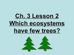 3rd grade ch 3 lesson 2 which ecosystems have few trees