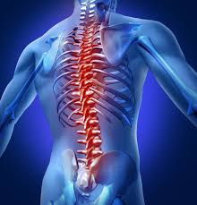recent scientific advances are giving hope to spinal cord injury