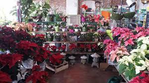 Urban Garden Supply - niche urban garden supply cbs boston