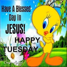 happy tuesday a blessed day in jesus pictures photos and