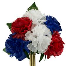 blue carnations white and blue carnation ni2195