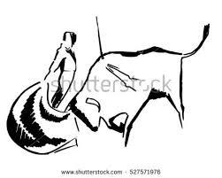 bullfight stock images royalty free images u0026 vectors shutterstock