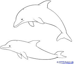 printable dolphin images printable dolphin coloring book cute pages radiorebelde info
