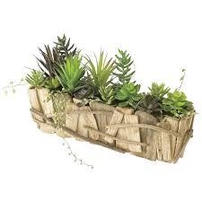 decorative faux cacti rectangle planter large time concept