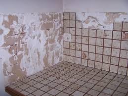 poser carrelage mural cuisine carrelage pour mur cuisine on decoration d interieur moderne leroy