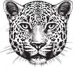25 tribal jaguar designs tribal jaguar images designs 24 amazing