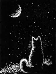 the cat and the moon roundhousepoetrycircle