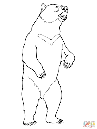 moon bear coloring page free printable coloring pages