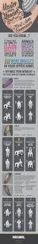 the 25 best barbell exercises ideas on pinterest barbell squat