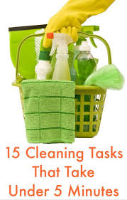 clean your house 192 best spring cleaning images on pinterest spring cleaning