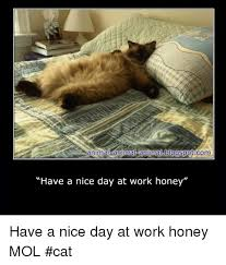 Have A Nice Day Meme - animal animalfanimalblogspotcom have a nice day at work honey have