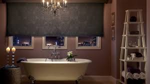 bathroom blinds window for treatments on in privacy ideas akioz