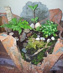 create your own cement cloth planter hydropro sales inc
