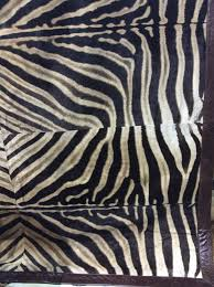 new from forsyth the one of a kind zebra rug at las vegas market