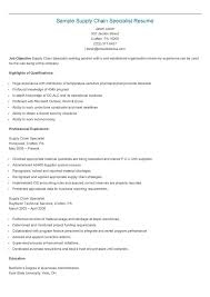 Seo Specialist Resume Sample by 235 Best Resame Images On Pinterest Resume Html And Website