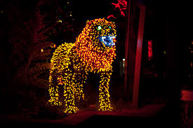 Zoo Lights Prices by Easy On The Eye Denver Zoo Lights Tickets At King Soopers