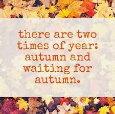 Fall Meme - 21 memes for those obsessed with fall