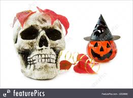 halloween skull background picture of scary halloween skull and pumpkin decorations