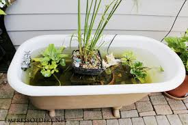 Old Bathtubs Diy Bathtub Garden Pond Empress Of Dirt