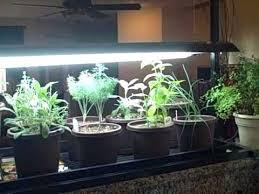 grow light indoor garden grow lights for indoor garden grow lights for your indoor gardening