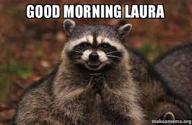 Meme Laura - good morning laura evil plotting raccoon make a meme