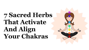 solar plexus chakra location align activate chakras jpg