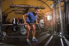 Bench Barbell Row Dumbbell Row Vs Barbell Row With Stronglifts Livestrong Com