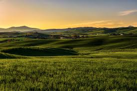 italy tuscany nature wallpapers fields mobile wallpapers hd