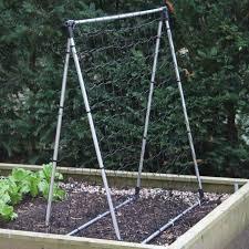 harrod slot u0026 lock pea support frames harrod horticultural uk