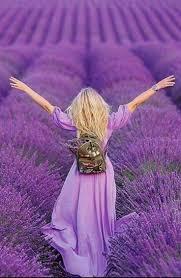 493 best purple images on pinterest all things purple purple