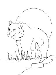 bear coloring pages sun flower pages