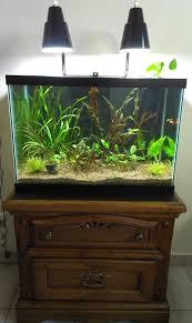 Aqueon Led Light 10 Gallon Tank Kit Or Buy Light Separately The Planted Tank Forum