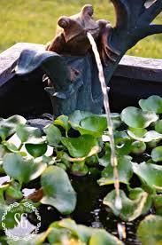 Frog Pond Backyard 52 Best Pond Spitters Images On Pinterest Pond Spitters Garden