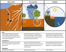 current developments in soil organic matter modeling and the