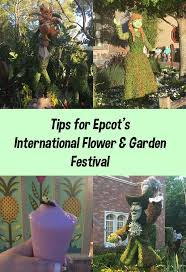 65 best epcot flower and garden festival images on pinterest