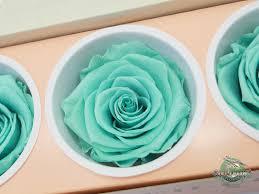 Teal Roses Preserved Roses Jet Fresh Flower Distributors Inc