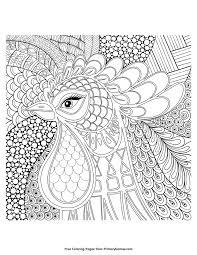 chinese coloring zentangle rooster head coloring