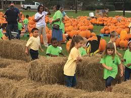 Hayden Pumpkin Patch Hours by Education News Oct 22 The Sumter Item