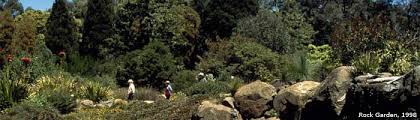 rock garden history australian national botanic gardens