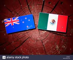 new mexican flag stock photos u0026 new mexican flag stock images alamy