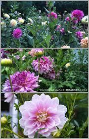 562 best garden snob images on pinterest flower gardening