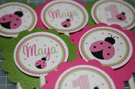 Ladybug Baby Shower Centerpieces by Pink And Green Ladybug Baby Shower Decorations Henol Decoration