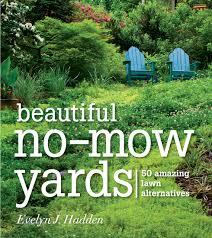 landscape fabric alternatives beautiful no mow yards 50 amazing lawn alternatives evelyn j