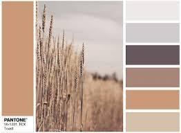 36 best fashion colors images on pinterest pantone color color
