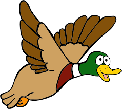flying duck cliparts free download clip art free clip art on